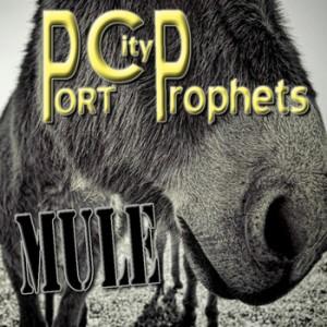 PortCityProphets Mule_c