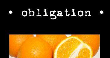 Snakedoctors - Obligation