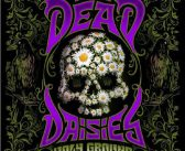 The Dead Daisies – Holy Ground