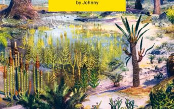 Johnny – Collecting Dinosaurs