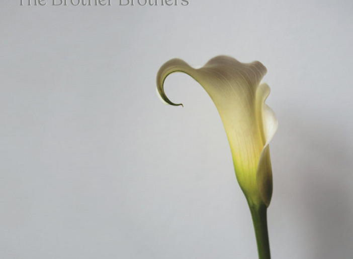 The Brother Brothers – Calla Lily