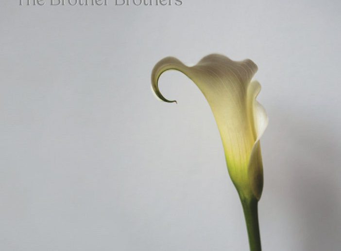 The Brother Brothers