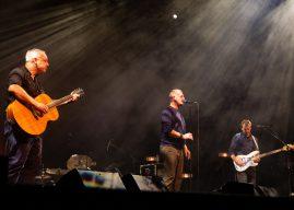 Racoon laat Limburg zingen